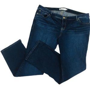 👖Torrid Women's 20R Denim Blue Jeans XLNT